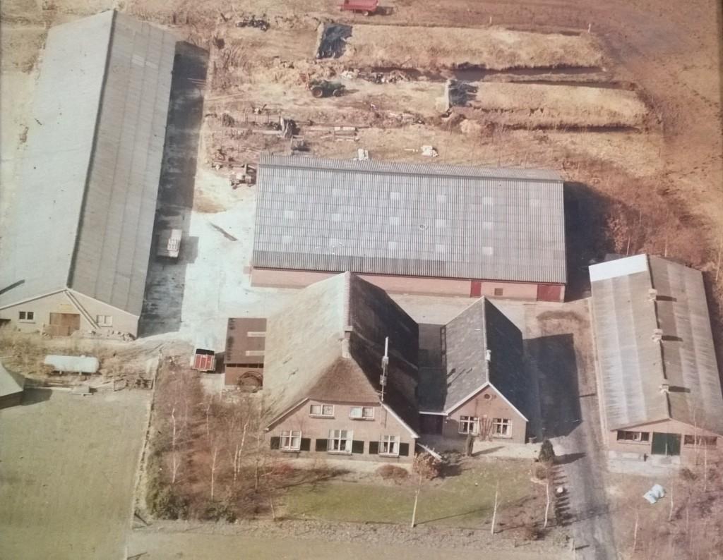 Foto eind jaren 70 met rechts de varkensschuur (waar nu de vleeskuikenstallen staan) en links de oude vleeskuikenstal uit 1963. Achter het woonhuis de ligboxenstal voor de koeien uit 1974.